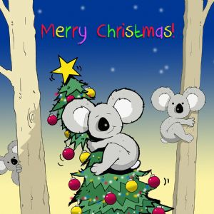 CANX21 – Merry Christmas Card Koala